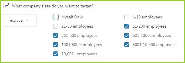 linkedin company size audience